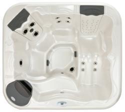 Model 251 hot tub