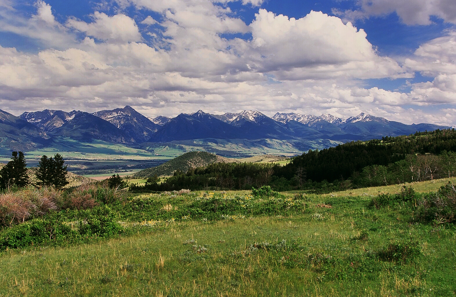 Local Car Auctions >> Massive Livingston, Montana Land Auction Announced by Hall ...