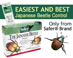 Safer Brand Japanese Beetle Trap - Easiest and Safest Japanese Beetle Control!
