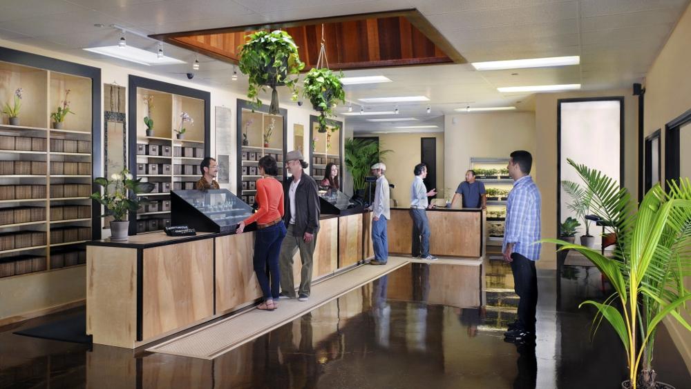 San Jose Medical Marijuana Collective Elemental Wellness