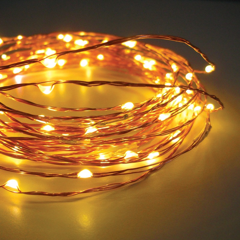 celebright led christmas lights in warm white on a copper color wire