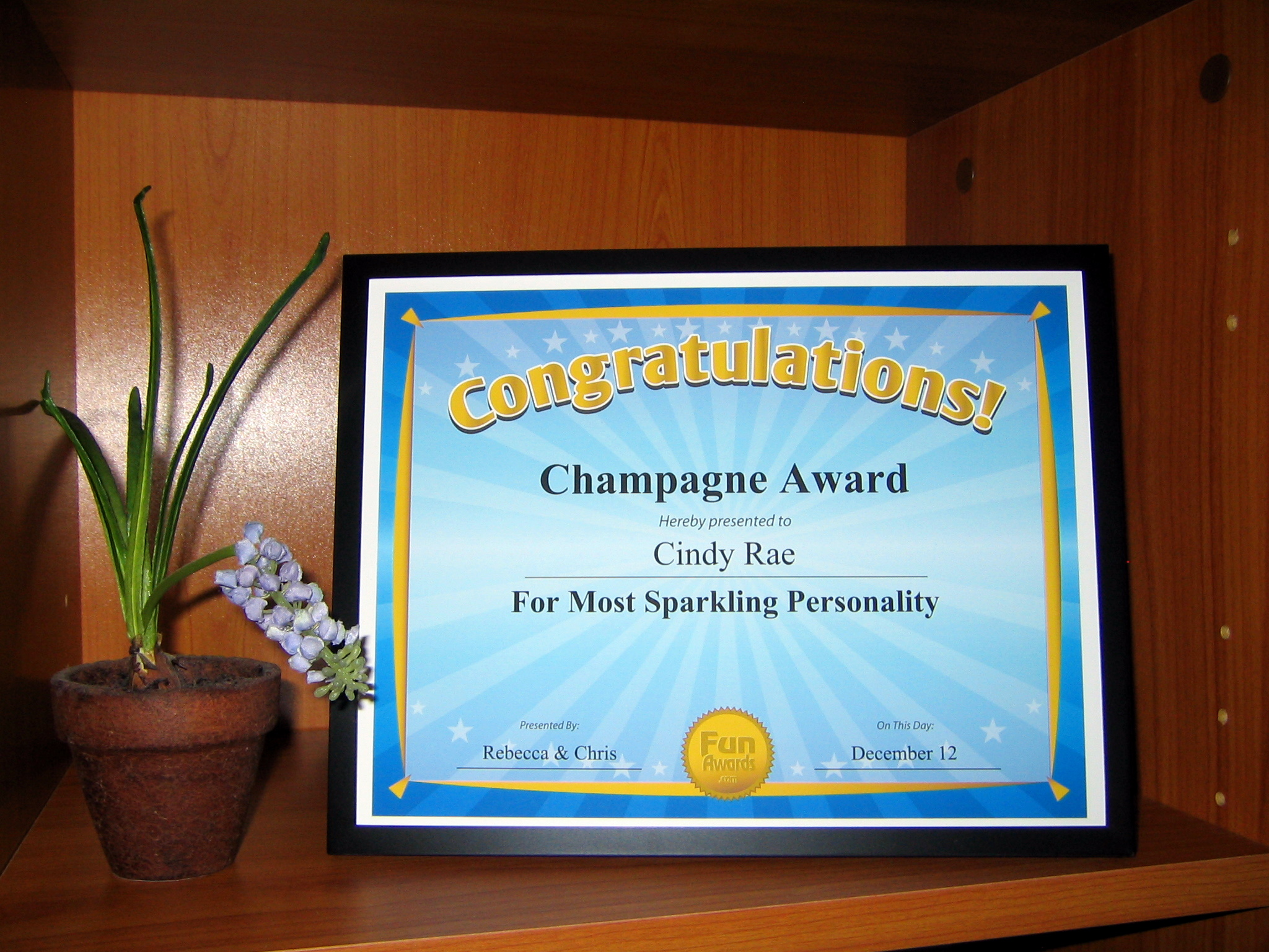Office Awards Employee Awards