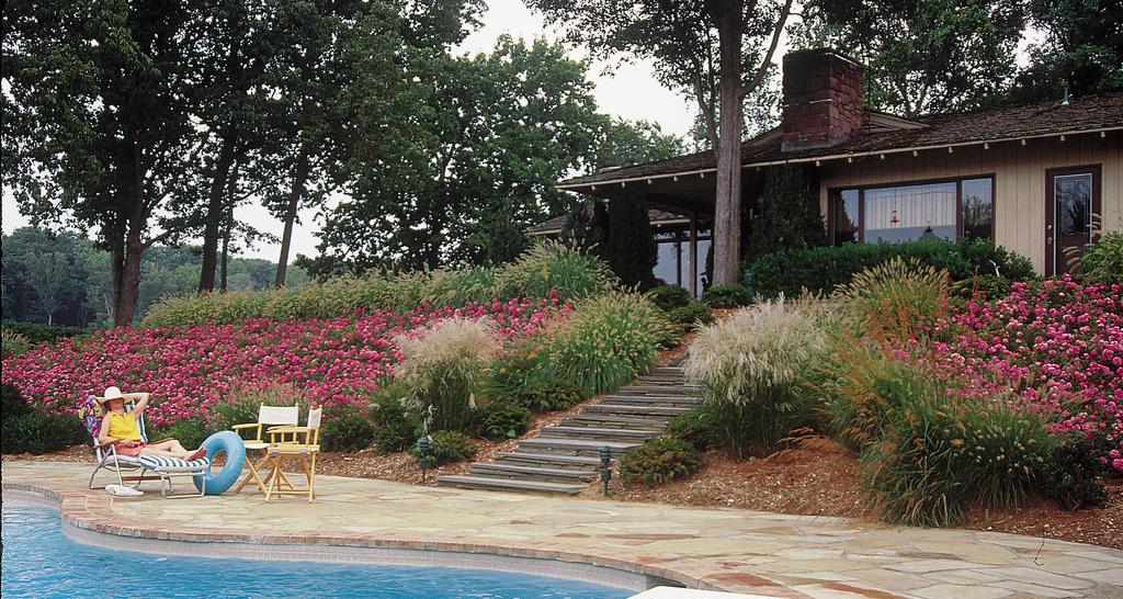 Back By Popular Demand Tesselaar Offers Garden Writers