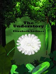 The Understory is the second novel from Elizabeth Leiknes, whose first book, The Sinful Life of Lucy Burns, was praised by chick lit pioneer Jane Green.