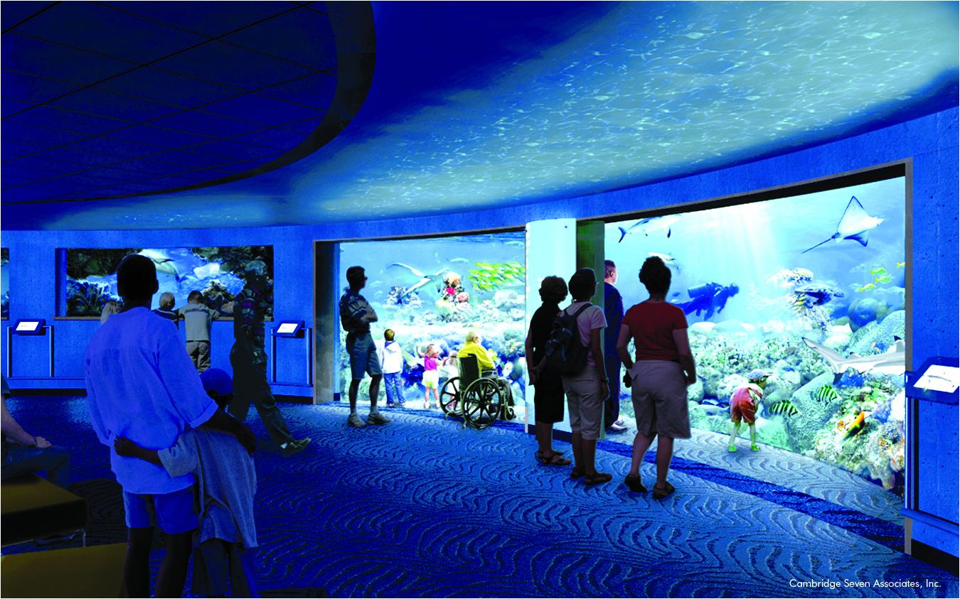 National Aquarium Announces New Blacktip Reef Exhibit