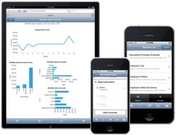 ActiveReports Server Mobile on iPad and iPhone