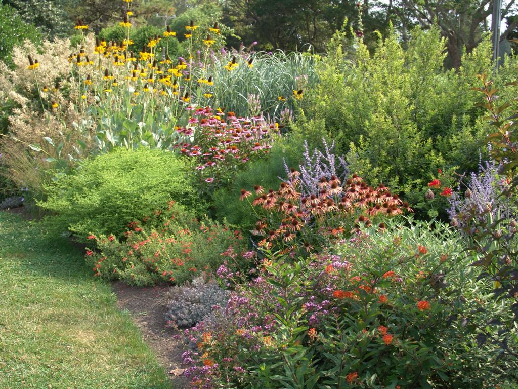 Rock Garden Landscaping Low Maintenance