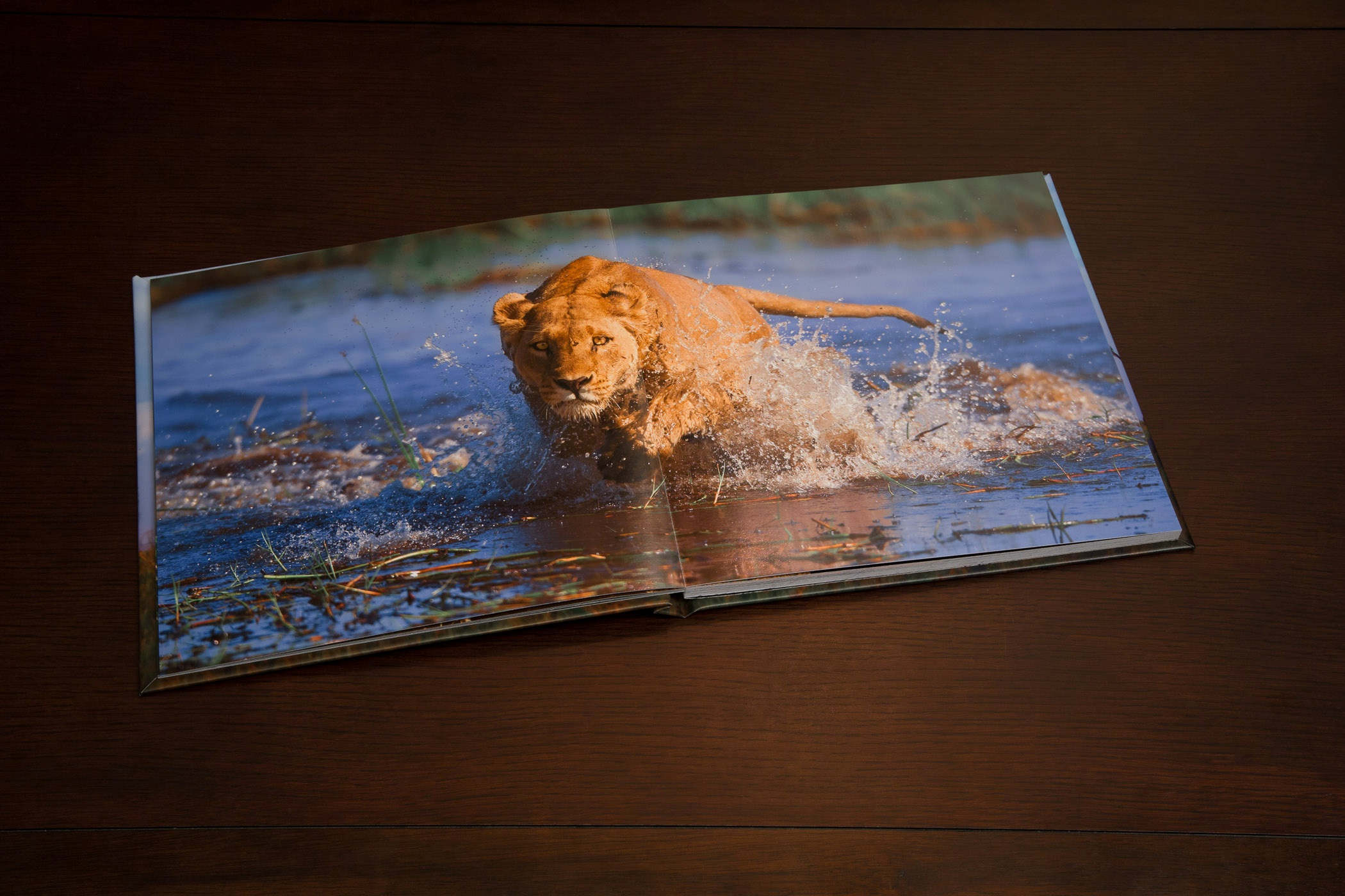 Captured I Africa Coffee Table Photo Book For Charity By Brian Hampton Custom