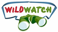 wildwatch