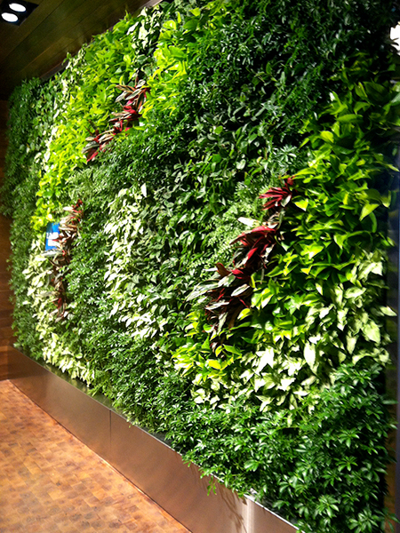 Gsky Living Green Walls: GSky Living Green Wall Offers Escape For Travelers Inside