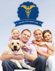 Interactive Chiropractic Website Design: Media81 Group