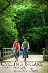 Cycling Breaks in the New Forest