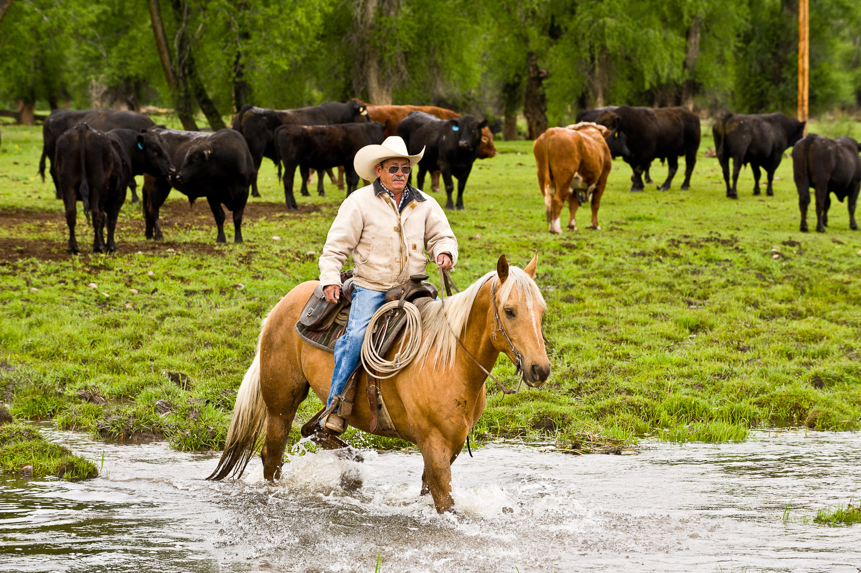 113th Annual Cattlemen's Days Celebrates Gunnison's Western