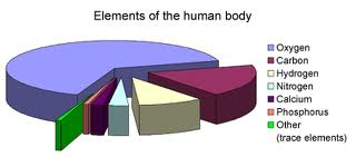 trace elements in the human body