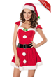 Sexy Adult Red Santa Claus Dress Christmas Costume