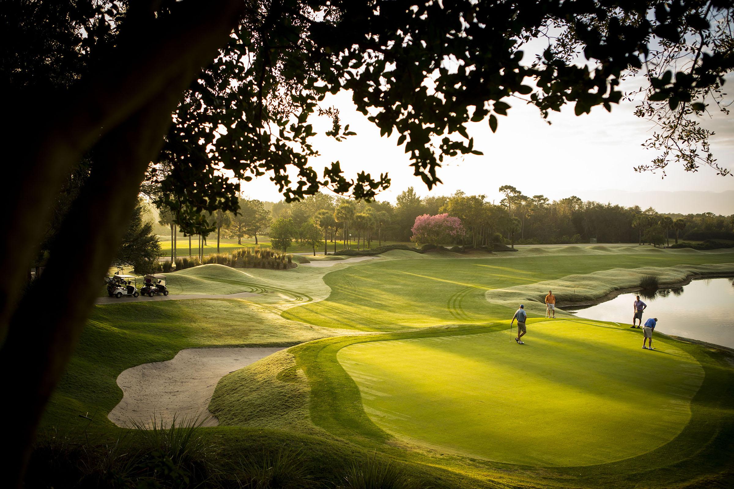 Villas of grand cypress golf resort