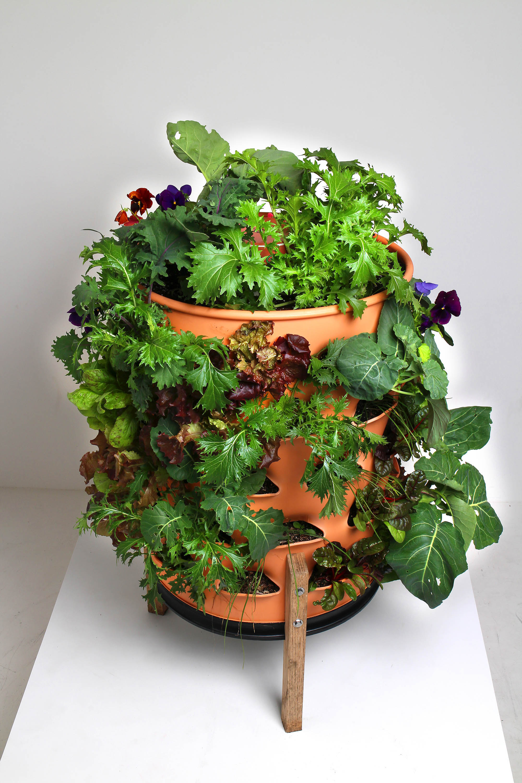 New Self Fertilizing Garden Tower Revolutionizes The