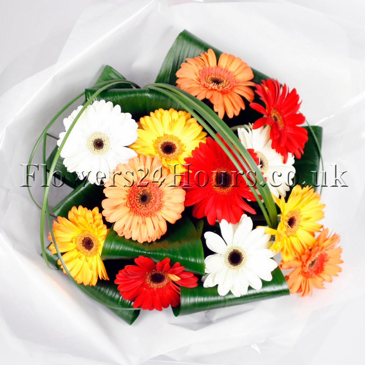 Grand and glamorous gerberas at flowers24hours flower delivery shop florists london flowers delivery london flowers delivery london flower shops in london izmirmasajfo