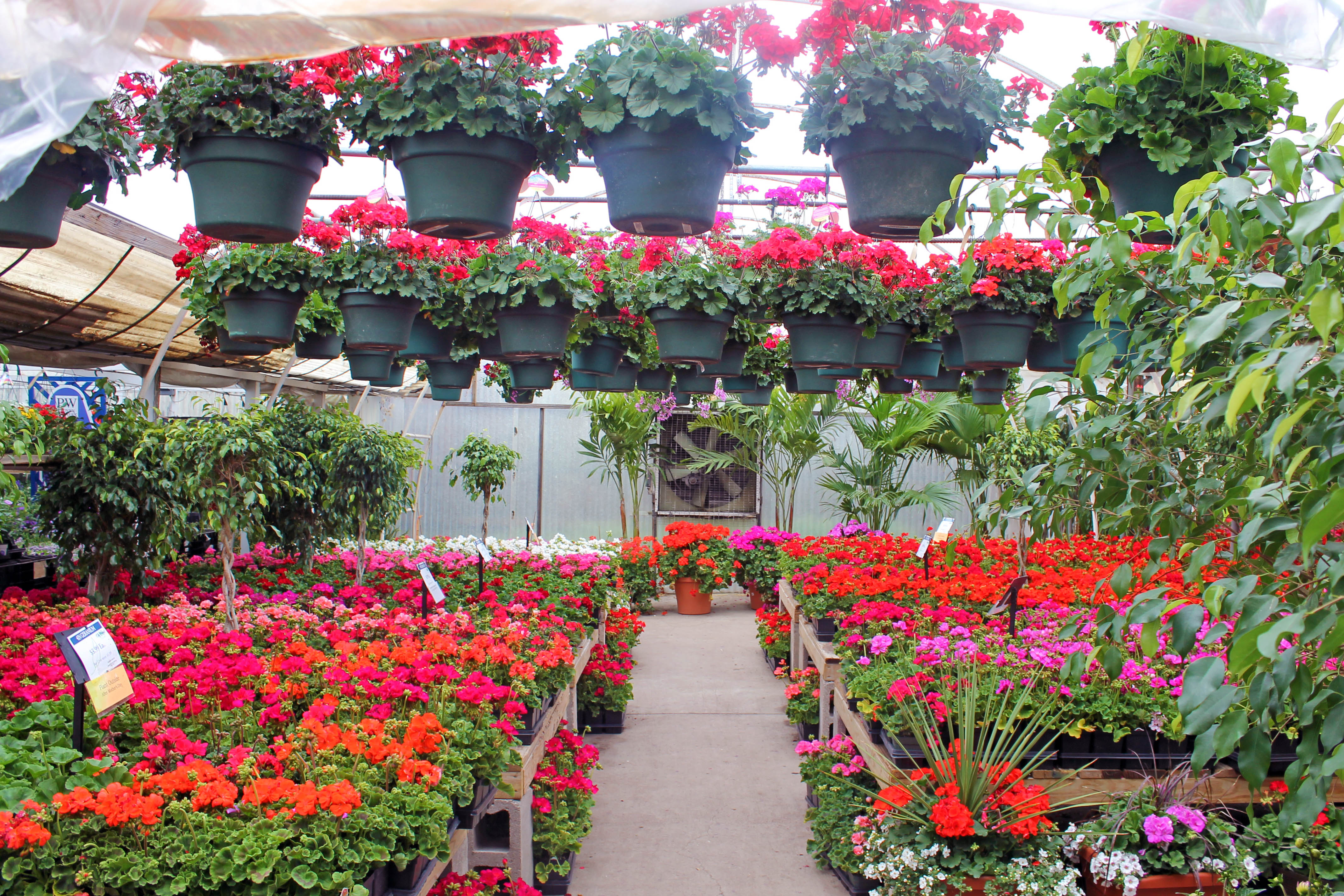 Merveilleux ... A Budding Or Expert Gardener Needs (and Wants) For Their Garden,  Landscape Or Nursery Within City Floral Garden Centeru0027s Diverse Garden  Store In Denver.