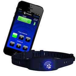 Electronic Dog Collars use Bluefang, Bluetooth Technology