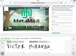 Browse and screen grab websites in MetaMoJi Note