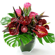 London flower delivery shop Flowers24hours provides Christmas flower arrangements, real Christmas trees delivery London UK. Sesonal flowers and plants online. Christmas flowers delivery London and Christmas gifts delivery London.