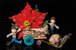 By Lisa Berczel featuring Premium Wafer Paper poinsettia.