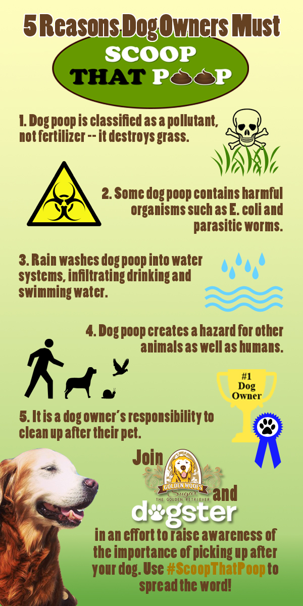 Clean Up Atlanta Dirty Work Dog Waste Removal Service