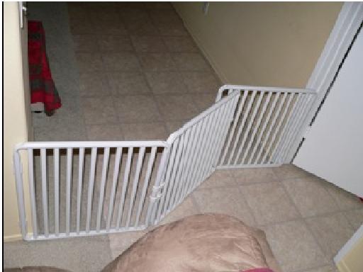 Wide Dog Gates ...