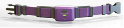 PetPace, Comprehensive Health Monitor for Pets, Now Distributing in the UK