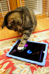 Cat Playing Video Games
