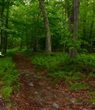 Enjoy Outdoor Fun in Franklin County at Inaugural Mason-Dixon Appalachian Trail Outdoor Festival