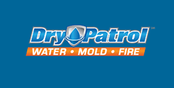 Flood Damage Contractors, Dry Patrol of Cincinnati offer tips on preventing mold damage