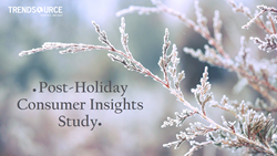 2015 Post-Holiday Consumer Study