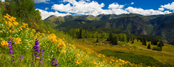 A New Home for the Colorado Carbon Fund