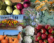 "Frederick County Office of Economic Development: ""Locally Grown Food is Closer Than You Think - Frederick Farmers' Markets Are Now Open"""