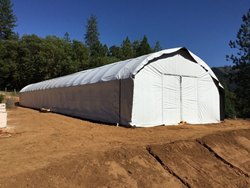 New Greenhouse Tech is Enhancing Growth in States that Recently Legalized Cannabis
