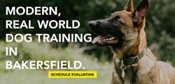 Bakersfield Dog Training