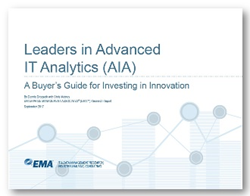 Leaders in Advanced IT Analytics