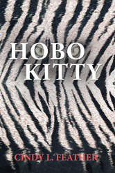 New Fiction Book Chronicles Adventures of Hobo Kitty and Her Owner
