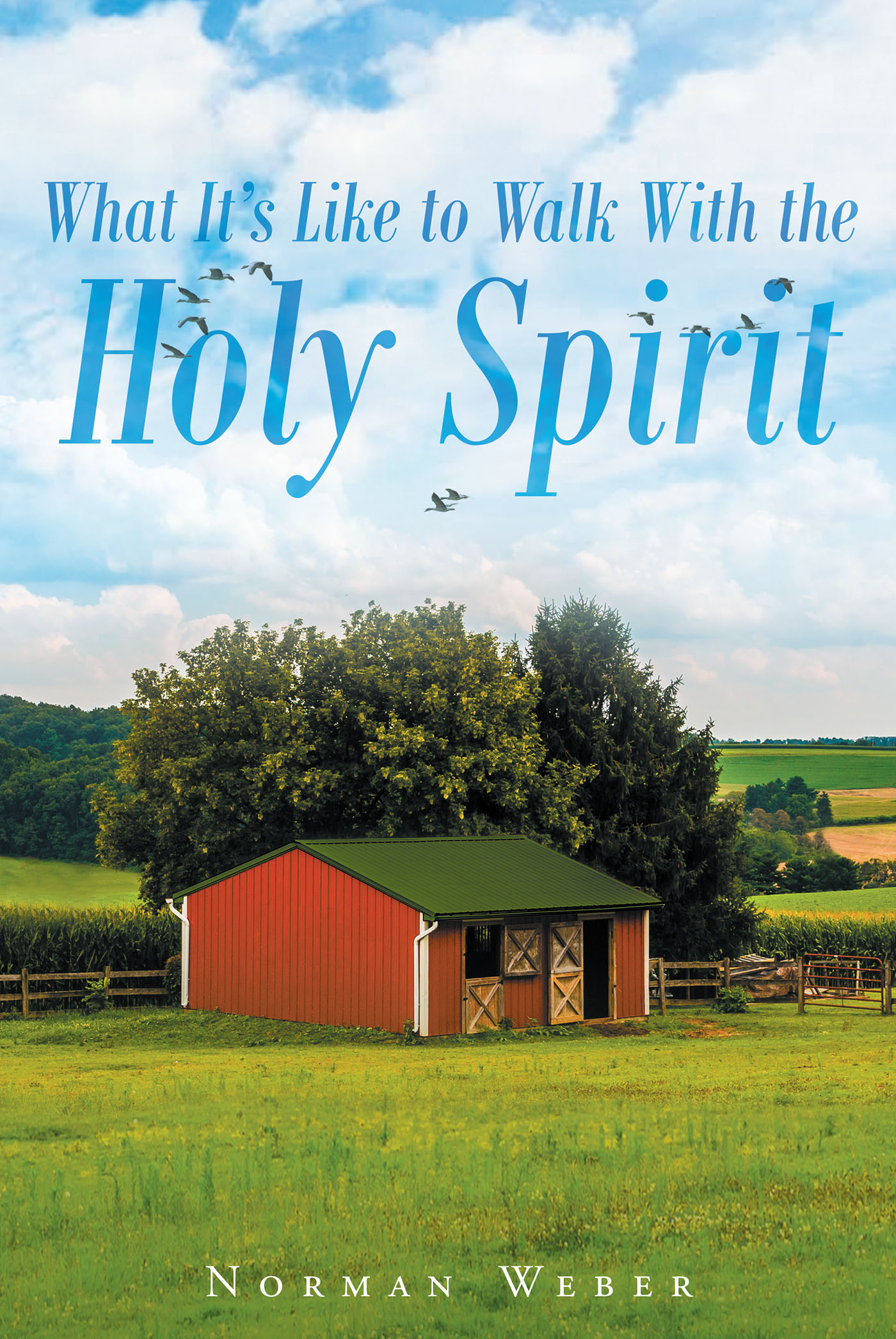 The Spirit Alive Faith Formation Program (Project Book and Awards)