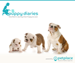 PetPlace.com Launches Puppy Diaries Series to Celebrate the Journey from Puppy to Love
