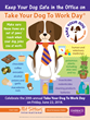Keep your dogs safe in the office on Take Your Dog To Work Day.