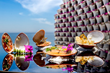 Chocolate Clam Tasting Menu Launching at Grand Velas Los Cabos