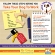 Follow these steps before you take your dog to work.