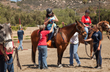 TERI Inc.'s First Annual Horse Show Showcases Innovative Campus for Individuals with Special Needs