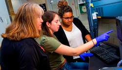 From left, Susan Roberts, PhD candidate Michelle McKee, and master's candidate Lexi Crowell analyze a sample from a Pacific yew cell culture using ultra-performance liquid chromatography.