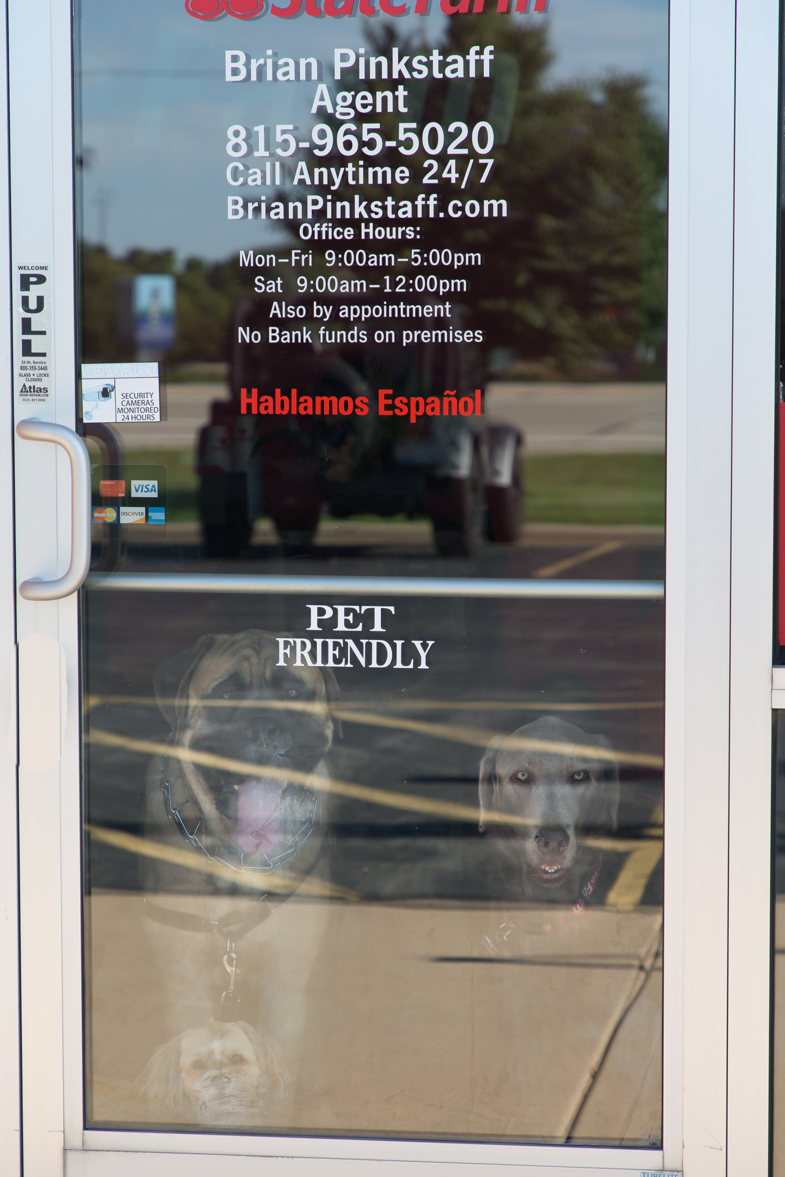 State Farm Insurance Agent Brian Pinkstaff Insuring Pets Virtual