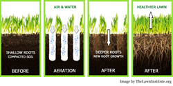 Lawn Aeration Diagram