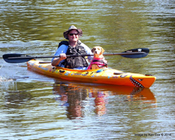 Paddle with your pup on the Appomattox River in Hopewell-Prince George VA.